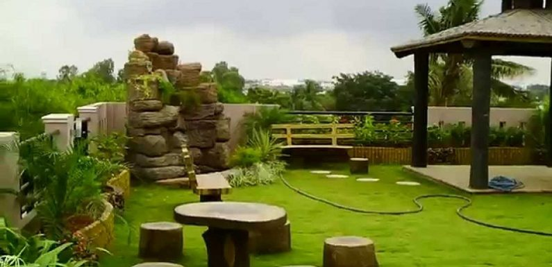 How to make your garden look nice with no money (Amazing ideas)