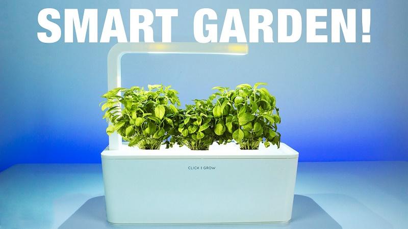 smart gardening in home