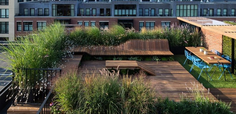 7 rooftop garden benefits that correct your illusion
