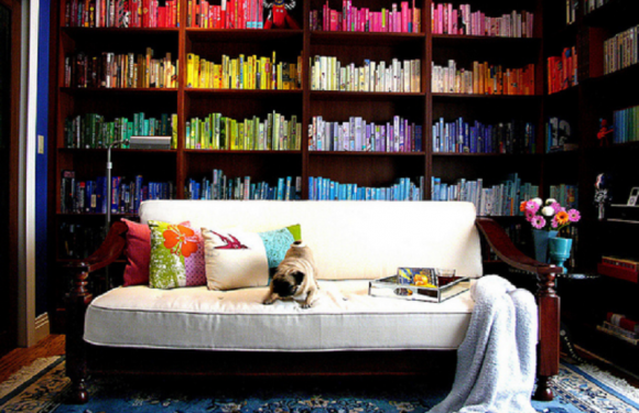 How to decorate a bookshelf in your room? An original ideas