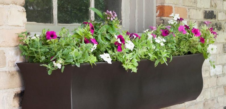 Most Loved Outdoor Window Planters