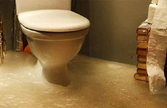 Overflowing toilet with poop: How to fix it? 6 ways