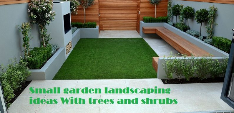 Small garden landscaping ideas with perfect trees and shrubs