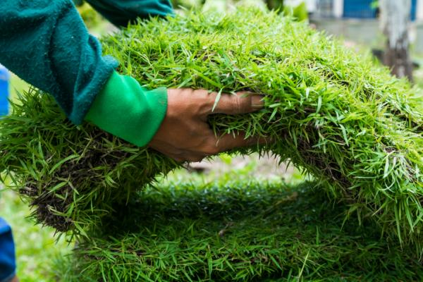 How to clean artificial turf