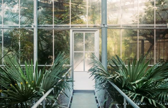 Conservatory problems you will want to avoid