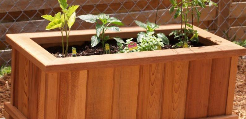 How to Prepare Wooden Crate Garden