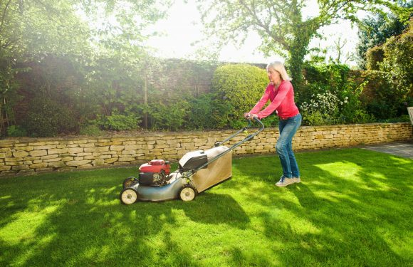 Benefits of Cutting the Grass Regularly