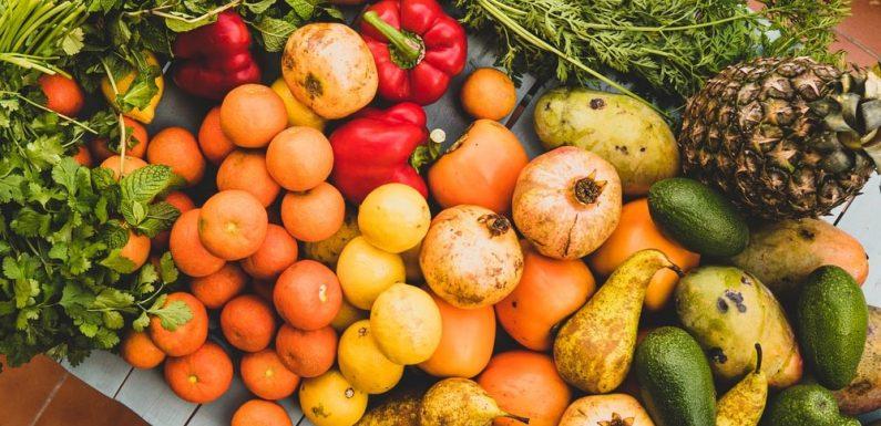 Fruit Gardening 101 for Beginners