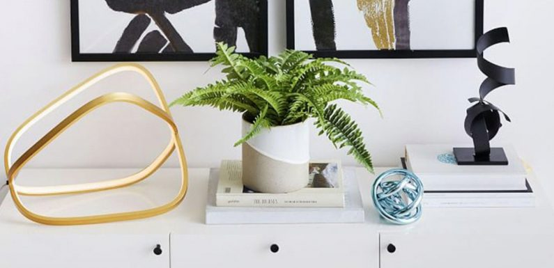 Looking Online And Finding The Perfect Artificial Plant For Your Home