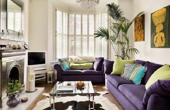 The purple sofa: Mystery and personality in the living room