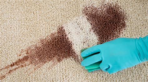 How to Avoid Damaging Your Carpet